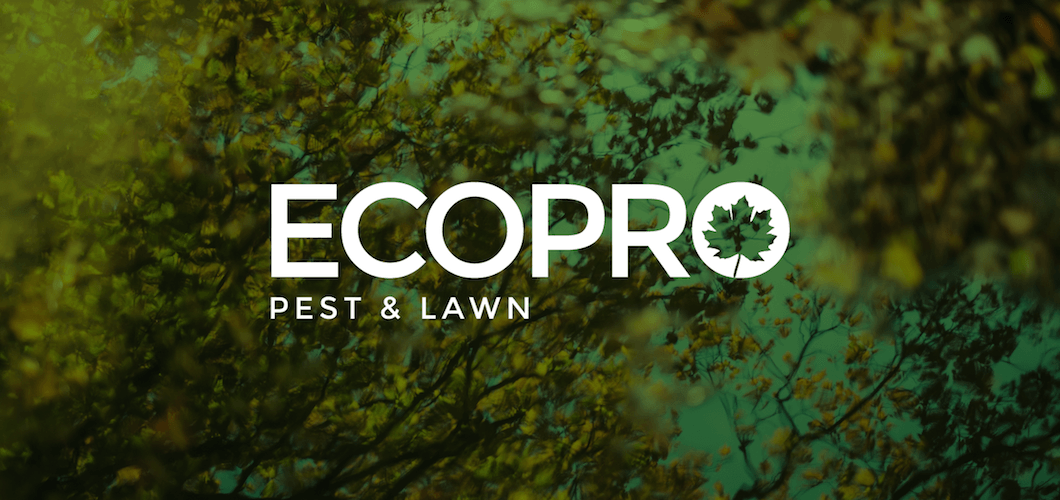 EcoPro Identity
